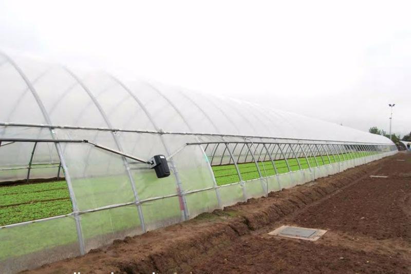 Промышленные фермерские теплицы